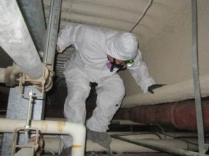 Hazmat Inspection (Asbestos/Lead)